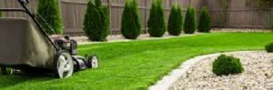 Green Lawn 2