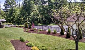Landscaping Photo