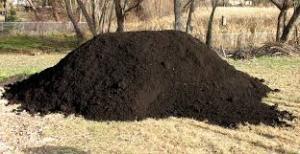 Top Soil Pile